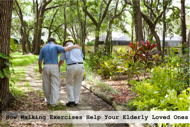 How Walking Exercises Help Your Elderly Loved Ones